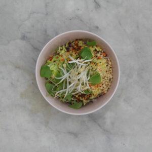 Vegan Rice Bowl Small