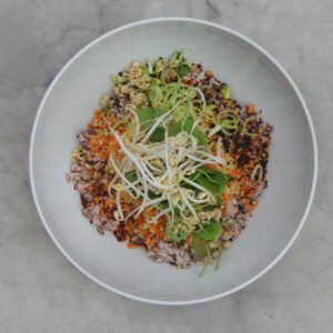 Vegan Rice Bowl Big