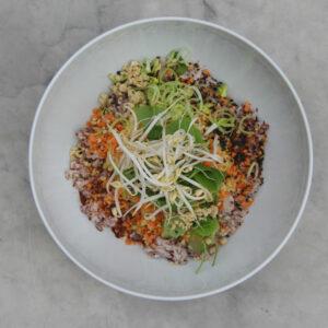 Vegan Rice Bowl Big