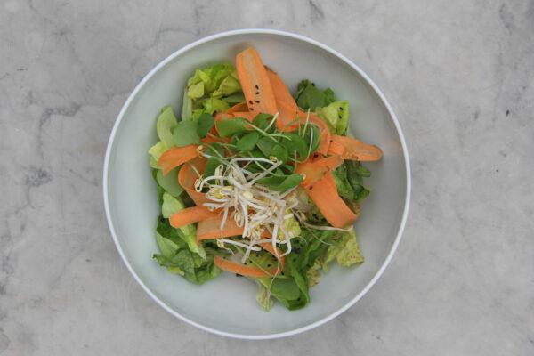 Salad Bowl Big
